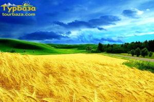 Одноденні туристичні тури Україною
