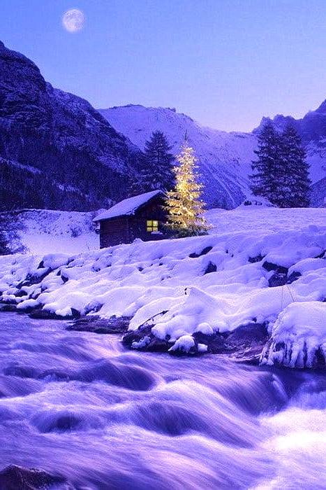 Закарпаття зима