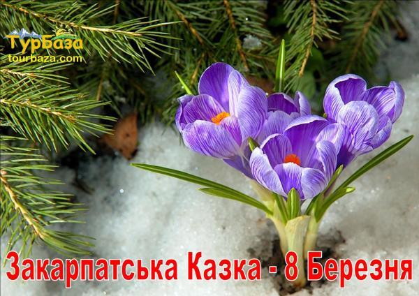 Zakarpatska_kazka_8_bereznia