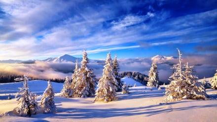Карпати зимою