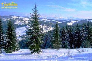 верховина зима1