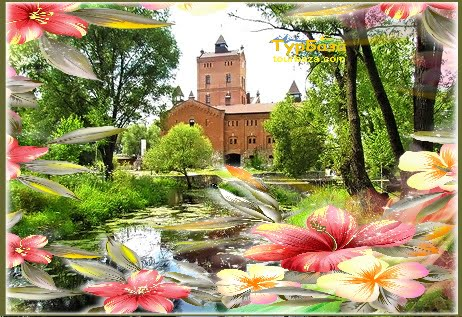 8 березня замки Житомира