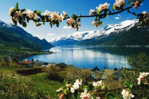 Норвегія, Хардангерфьорду